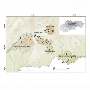 Species richness pattern along altitudinal gradient in central European beech forests