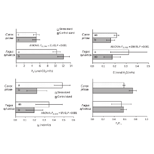 Environmental impact of the Al smelter on physiology and macronutrient contents in plants and Cambisols